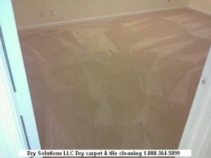 clean carpet 01