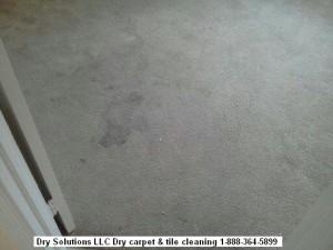 dirty carpet 01